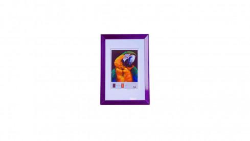 Trendy fotorámeček 15x20 FRESH STYLE fialový